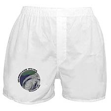 Satellite Hurricane Wilma Boxer Shorts