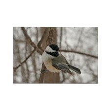 Cute Chickadee Rectangle Magnet