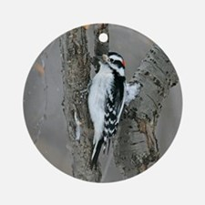 Male Downy Woodpecker Ornament (Round)