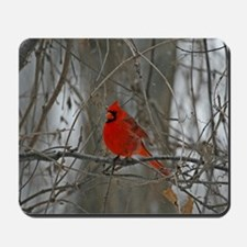 A Male Cardinal Mousepad