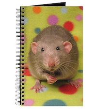 Dumbo Rat Journal