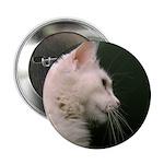 Whiskerpower Button