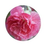 Pink Carnation Ornament (Round)
