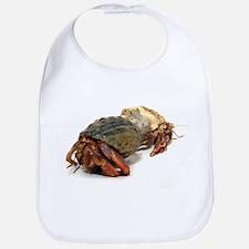 Wandering Hermit Crabs Bib