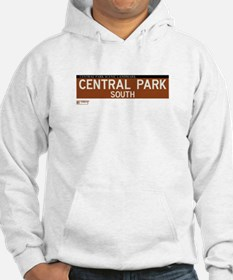 Central Park South in NY Hoodie