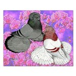 Trumpeter Pigeons and Flowers Small Poster