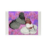 Trumpeter Pigeons and Flowers Rectangle Magnet