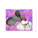 Trumpeter Pigeons and Flowers Postcards (Package o