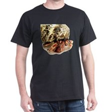 Hermit Crab Up Close and Pers T-Shirt