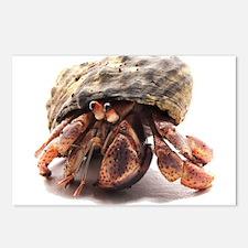 Hermit Crab Posing Postcards (Package of 8)