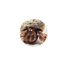 Hermit Crab Posing Mini Button