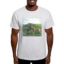 Border Terrier at Hadrian's Wall Ash Grey T-Shirt