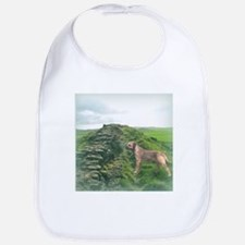 Border Terrier at Hadrian's Wall Bib