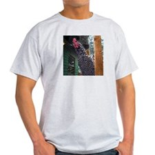 R.E.S.P.E.C.T. Ash Grey T-Shirt