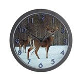 Hunting Basic Clocks