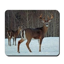 Buck & Doe Mousepad