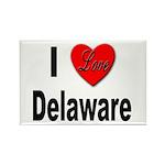 I Love Delaware Rectangle Magnet (10 pack)
