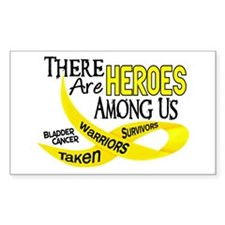Heroes Among Us BLADDER CANCER Rectangle Decal