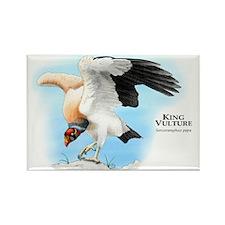 King Vulture Rectangle Magnet