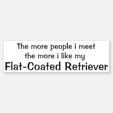 I like my Flat-Coated Retriev Bumper Bumper Bumper Sticker