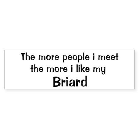 I like my Briard Bumper Sticker (10 pk)