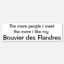 I like my Bouvier des Flandre Bumper Car Car Sticker