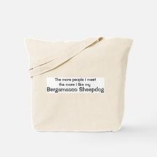 I like my Bergamasco Sheepdog Tote Bag