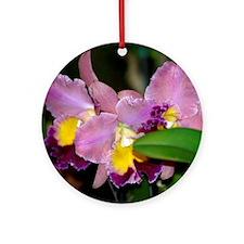 Lavender Orchids Ornament (Round)