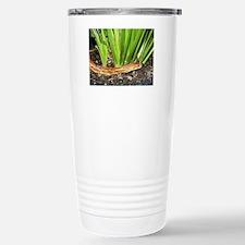 Corn Snake Travel Mug