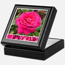 "English Rose ""Big Purple"" Keepsake Box"
