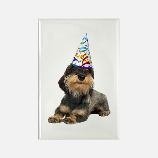 Wirehaired Dachshund Party Rectangle Magnet