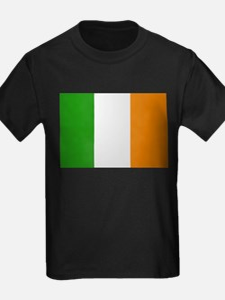 Classic Irish Flag T
