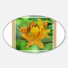Flame Azalea2 Oval Decal