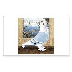 Satinette Pigeon In Loft Rectangle Decal