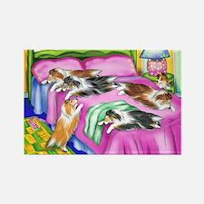Sheltie Pink Comfort Rectangle Magnet