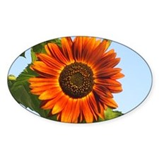 Sunflower Oval Decal