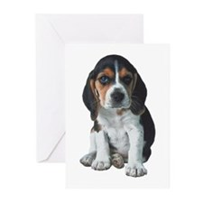Beagle Greeting Cards (Pk of 20)