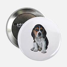 "Beagle 2.25"" Button"