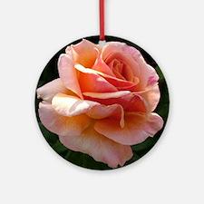 "English Rose ""Princess Royal"" Ornament"
