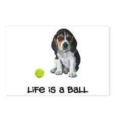 Beagle Life Postcards (Package of 8)