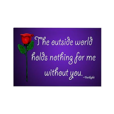 Outside World Twilight Rectangle Magnet (10 pack)