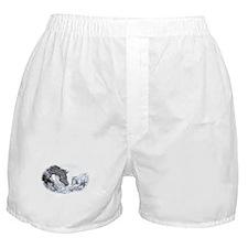 Cutting Horse Boxer Shorts