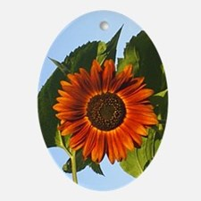 Sunflower Oval Ornament