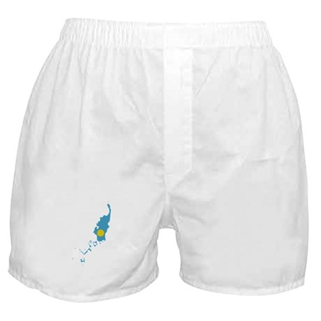Palau Stripe Custom Design Boxer Shorts