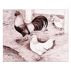 Ameraucana Fowl Trio Posters