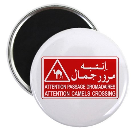 Attention Camels Crossing, Tunisia Magnet