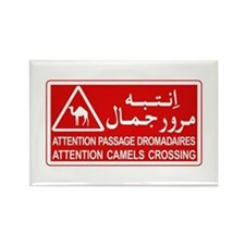 Attention Camels Crossing, Tunisia Rectangle Magne