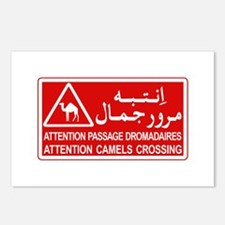 Attention Camels Crossing, Tunisia Postcards (Pack