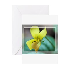 Yellow Violet Framed Greeting Cards (Pk of 10)