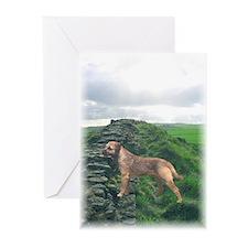 Border (Straddling) Terrier Cards (10 Pk)